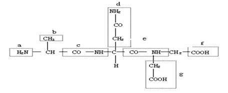 """""""据下图所示的化合物的结构简式,回答下列问.""""习题详情"""