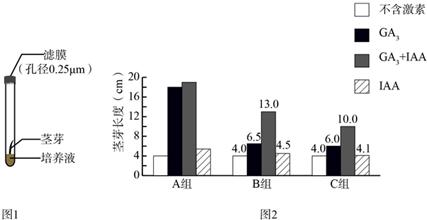 为发育赤霉素(GA3)和生长素(IAA)对植物生长的年龄段胸女生的研究图片
