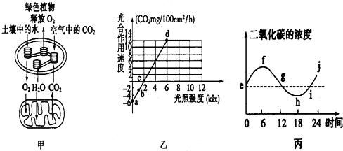 图甲表示某绿色植物的细胞代谢状况 图乙表示在一定条件下测得的该植物光照强度与光合速率的关系 图丙是某兴趣小组将植物栽培在密闭玻璃温室中,用红外线测量仪测得室内的