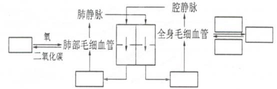 电路 电路图 电子 原理图 554_178