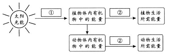 电路 电路图 电子 设计 素材 原理图 554_177