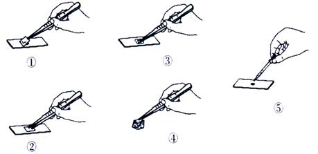 如图为制作洋葱鳞片叶内表皮细胞临时装片的几个步骤.