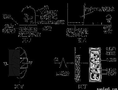 电路 电路图 电子 设计 素材 原理图 383_291