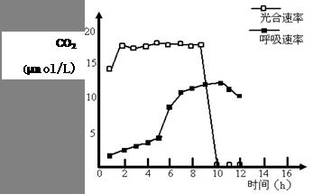 为了探究外界因素与蜜柑光合作用速率之间的关系,实验人员在4月 6月测定了某地晴朗天气条件下蜜柑叶片的净光合速率 A图 和胞间C02浓度 B图 的变化情况 请据图回答下列问题