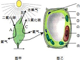 艺术囹�a�b-�/g_日常生活中人们常用酵母菌发面蒸馒头,某学生想探究酵