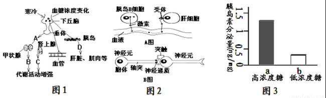 """人体神经调节的基本方式--反射知识点 """"2007年5月《新明晚报》消息:上"""