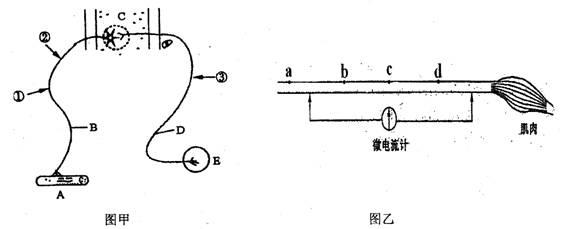 电路 电路图 电子 设计图 原理图 561_229