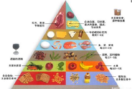 """了一个""""健康饮食金字塔"""""""