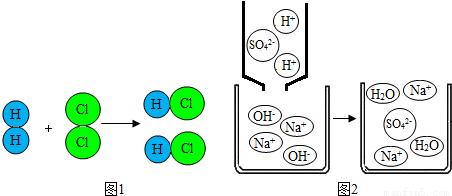 """微观示意图,""""●""""与""""○""""分别表示不同元素的原子"""
