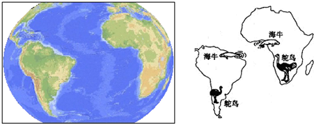 如图为南北半球海陆分布图,读图回答3~6题.