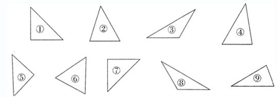 """图形____是直角三角形.""""习题详情"""