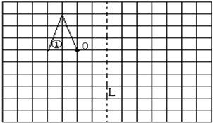 画一画. 1 画一个和左边的四边形相同的平行四边形. 2 再画一个和左边的平行四边形对称的平行四边形. 乐乐课堂