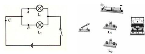 """""""习题详情  """"探究并联电路中电流关系""""的实验中: (1)参照所给电路图"""
