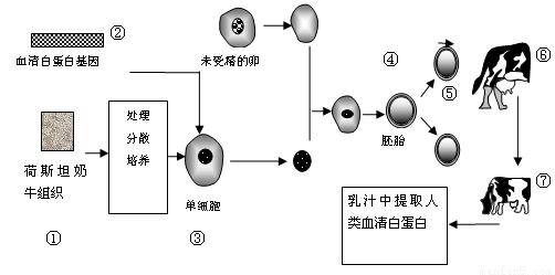 经过分析,习题下图表示利用转基因山羊生产抗血栓药物的过程。请回答下列问题:为了使乳汁中含有抗血栓药物,需要获取仅在____细胞中特异性表达的基因启动子,实现a过程常用的方法是____。为了获得更多的转基因山羊可对____时期的胚胎进行分割。胚胎移植过程中,需对供、受体母羊进行____处理。在受体内能够存活的生理学基础是____。.