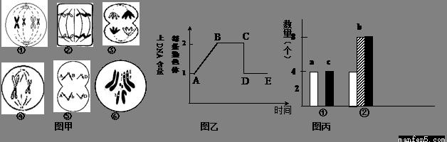 三相全控桥不可逆电路图
