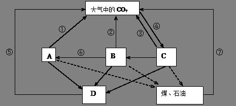 下图是生态系统碳循环过程示意图,其中a,b,c,d组成生物群落.