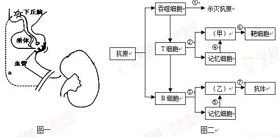 电路 电路图 电子 原理图 547_269