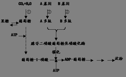 电路 电路图 电子 原理图 421_257