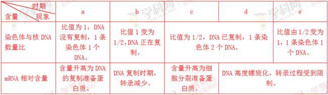 下图表示某高等动物细胞分裂各阶段染色体数与核dna