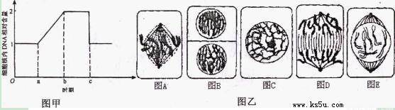 经过分析,习题在动物细胞有丝分裂过程中,某一分裂时期细胞内的染色体数(a),染色单体数(b)及DNA分子数(c)如右图所示,此时细胞内可能发生的变化及所处的时期是____主要考察你对细胞增殖 等考点的理解。 因为篇幅有限,只列出部分考点,详细请访问乐乐课堂。