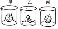 在0.3g/ml蔗糖溶液中的洋葱表皮细胞,中央液泡逐渐变小,不能说明