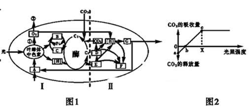 电路 电路图 电子 原理图 505_222