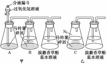 某同学在研究马铃薯块茎细胞呼吸方式时,设计了如图所示实验,请回答下