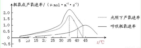 下列是一个三肽分子的结构简图,据图回答:(7分)