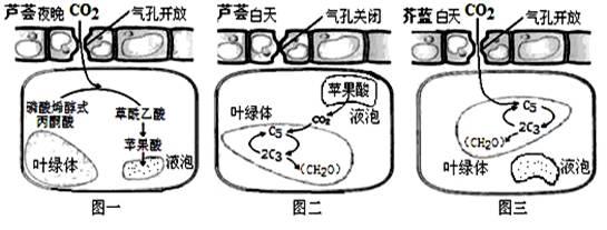 电路 电路图 电子 原理图 545_207