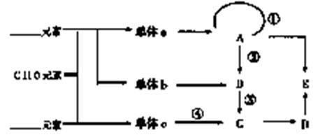 下列结构中,不是构成天然蛋白质的氨基酸的是
