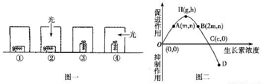 经过分析,习题(5分)下图为典型的细胞核及其周围部分结构示意图。请据图回答:(1)图中标号4参与____的形成,在有丝分裂____期重现。(2)若用丙酮从该细胞中提取脂质,在空气水界面上铺展成单分子层,测得的单分子层面积是否大于该细胞表面积的2倍?理由是____。(3)用甲基绿吡罗红混合染液对该活细胞组织进行染色,结果观察不到应有的现象,原因是____。.