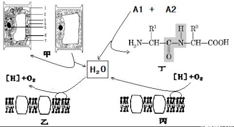 电路 电路图 电子 原理图 480_261