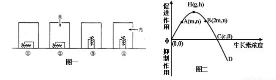 图一表示植物细胞亚显微结构