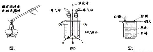 下图所示的实验可用于研究燃烧的条件